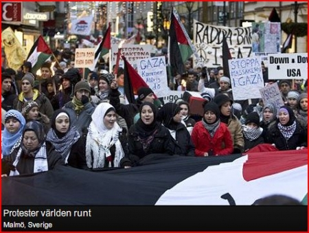 protester-malmo1