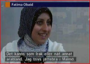 120522_malmoe_arabland