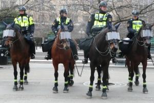 Kavalleriet
